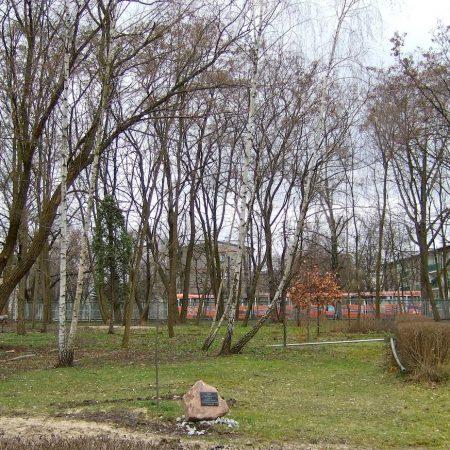 Warsaw, park