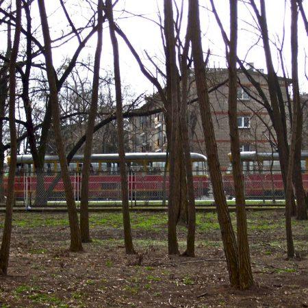 Warsaw, atmosphere park