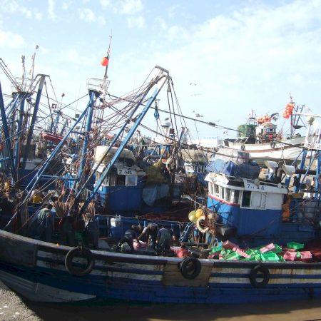unloading fish trawlers